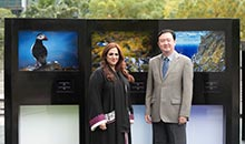 Chinese Ambassador to the UAE Visits HIPA Gallery